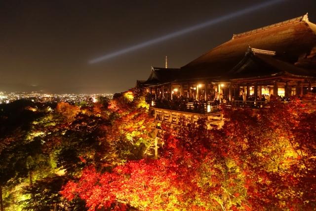 1年半で貯めた500円玉貯金で京都旅行した時の費用と内訳公開!